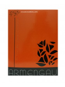 Armengau - Fontaine à Vin - Rouge Merlot - 10L