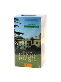 Cap de Fouste - Fontaine à Vin - Blanc 3L
